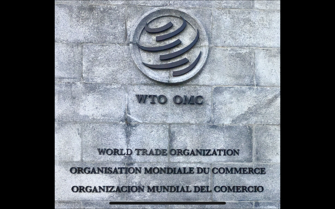 What to Do About the WTO